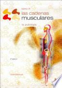 Cadenas Musculares Las Tomo Iii La Pubalgia