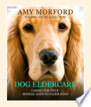 Dog Eldercare  Caring for Your Middle Aged to Older Dog