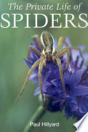 The Private Life of Spiders And A Useful Tool For Hunting