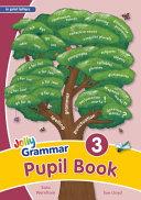 Grammar 3 Pupil Book  in Print Letters