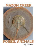 Mazon Creek Fossil Animals