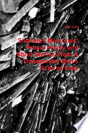 Shattered Memories  Prose  Poetry and Short Stories from A Transgender Man s Point of View