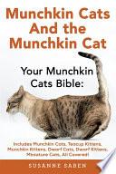 Munchkin Cats And The Munchkin Cat : munchkin kittens to the adult munchkin cat,...