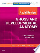 Gross and Developmental Anatomy