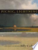 Picnic, Lightning