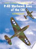 P 40 Warhawk Aces Of The Cbi