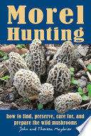 Morel Hunting