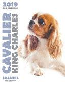 Cavalier King Charles Spaniel 2019 Dog Calendar Uk Edition