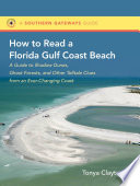 How to Read a Florida Gulf Coast Beach