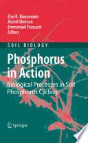 Phosphorus in Action