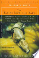 The Tapir s Morning Bath