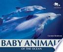 Baby Animals of the Ocean