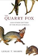 The Quarry Fox
