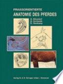 Praxisorientierte Anatomie und Prop  deutik des Pferdes