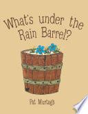 What's Under the Rain Barrel?