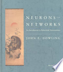 Neurons and Networks