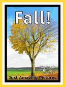 Just Fall  vol  1