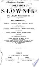 A Complete Dictionary English and Polish and Polish and English  Polish English Book PDF