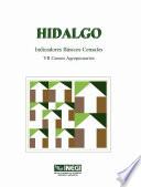 Hidalgo Indicadores B Sicos Censales Vii Censos Agropecuarios 1991