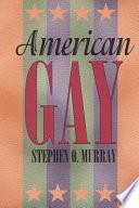 American Gay book