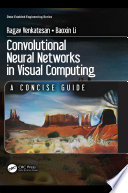 Convolutional Neural Networks in Visual Computing