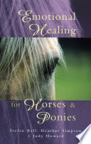 Emotional Healing For Horses   Ponies