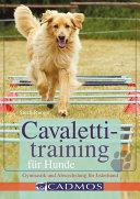 Cavalettitraining für Hunde
