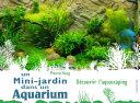 illustration Un mini jardin dans un aquarium