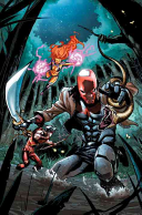 Red Hood and the Outlaws Vol  7  the New 52