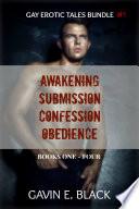 Gay Erotic Tales Bundle (Gay Erotic Tales 1, 2, 3, and 4): Gay Erotica