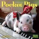 Pocket Pigs Mini Wall Calendar 2017  The Famous Teacup Pigs of Pennywell Farm