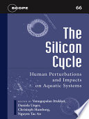 The Silicon Cycle