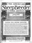 The American Sheep Breeder   Wool Grower Vol  31 No 1