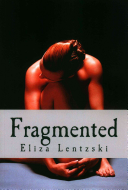 Fragmented Book Cover