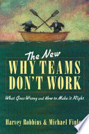 The New Why Teams Don T Work