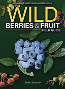 Wild Berries   Fruits