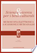 Scienza   ricerca per i beni culturali