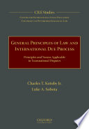 General Principles of Law and International Due Process