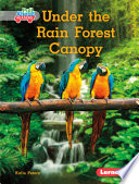 Under the Rain Forest Canopy