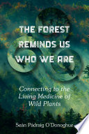 The Forest Reminds Us Who We Are