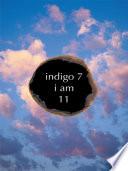 Indigo 7 Book PDF