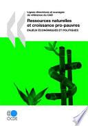 Lignes directrices et ouvrages de référence du CAD Ressources naturelles et croissance pro-pauvres Enjeux économiques et politiques