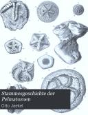 Stammesgeschichte der Pelmatozoen