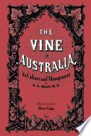 The Vine in Australia