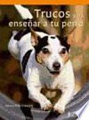 Trucos Para Ense Ar A Tu Perro