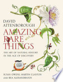 Amazing Rare Things Book PDF