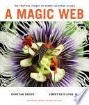 A Magic Web