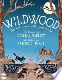 Wildwood   Das Geheimnis unter dem Wald