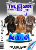 The Complete Guide to Miniature Dachschunds