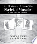 An Illustrated Atlas of the Skeletal Muscles  Study Guide and Workbook